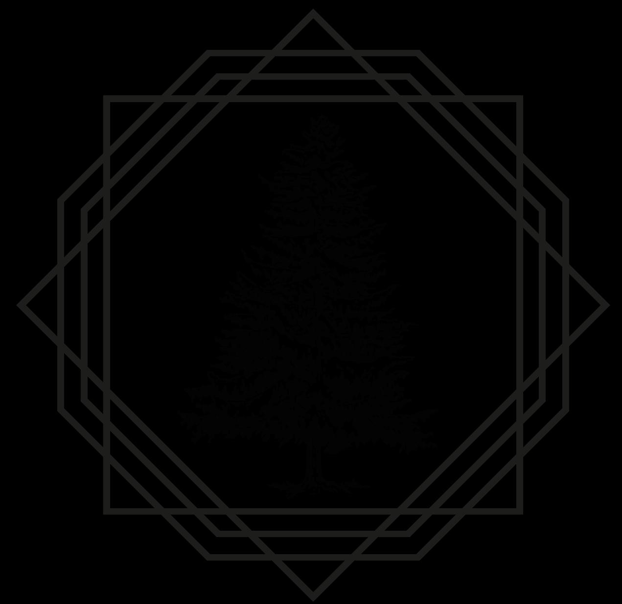 Catedra Laudato Si